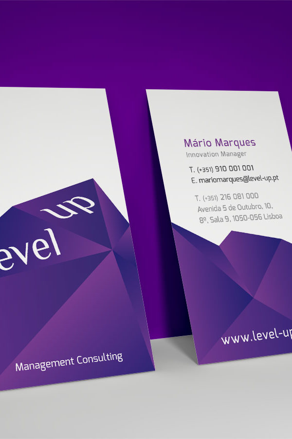 Level-Up Consulting